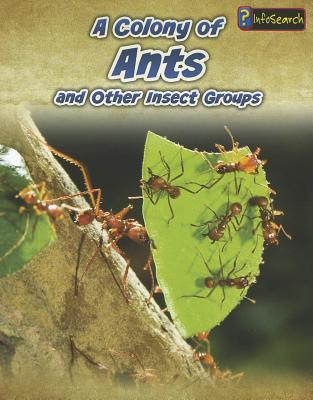 A Colony of Ants By Claybourne, Anna